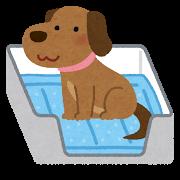 pet_toilet_sheet_dog.png